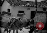 Image of Mules for transportation Caracas Venezuela, 1940, second 57 stock footage video 65675050640