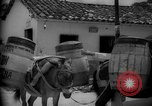 Image of Mules for transportation Caracas Venezuela, 1940, second 58 stock footage video 65675050640