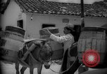 Image of Mules for transportation Caracas Venezuela, 1940, second 59 stock footage video 65675050640