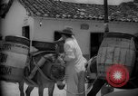 Image of Mules for transportation Caracas Venezuela, 1940, second 61 stock footage video 65675050640