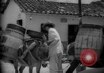 Image of Mules for transportation Caracas Venezuela, 1940, second 62 stock footage video 65675050640