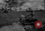 Image of man with container on his back Caracas Venezuela, 1940, second 13 stock footage video 65675050648