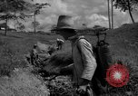 Image of man with container on his back Caracas Venezuela, 1940, second 14 stock footage video 65675050648
