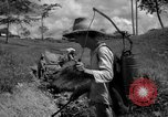 Image of man with container on his back Caracas Venezuela, 1940, second 19 stock footage video 65675050648