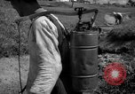 Image of man with container on his back Caracas Venezuela, 1940, second 28 stock footage video 65675050648
