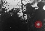 Image of camouflaging techniques Italy, 1945, second 17 stock footage video 65675050680