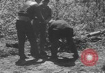 Image of communication wires United States USA, 1945, second 61 stock footage video 65675050686