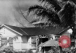 Image of Pearl Harbor Attack Hawaii USA, 1941, second 37 stock footage video 65675050729