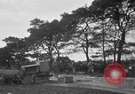Image of U.S. Army troops practice road blocking tactics Hammond Louisiana USA, 1943, second 56 stock footage video 65675050737