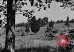 Image of camouflage United States USA, 1942, second 18 stock footage video 65675050740