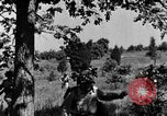 Image of camouflage United States USA, 1942, second 26 stock footage video 65675050740