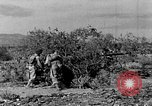 Image of camouflage United States USA, 1942, second 8 stock footage video 65675050742