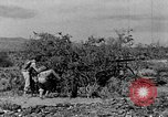Image of camouflage United States USA, 1942, second 9 stock footage video 65675050742
