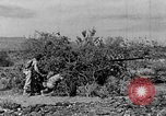 Image of camouflage United States USA, 1942, second 10 stock footage video 65675050742