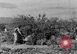 Image of camouflage United States USA, 1942, second 13 stock footage video 65675050742