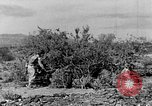 Image of camouflage United States USA, 1942, second 14 stock footage video 65675050742