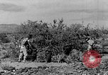 Image of camouflage United States USA, 1942, second 16 stock footage video 65675050742