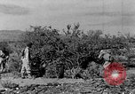 Image of camouflage United States USA, 1942, second 17 stock footage video 65675050742