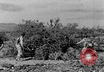 Image of camouflage United States USA, 1942, second 18 stock footage video 65675050742