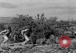 Image of camouflage United States USA, 1942, second 19 stock footage video 65675050742