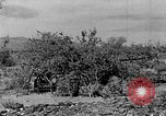 Image of camouflage United States USA, 1942, second 22 stock footage video 65675050742