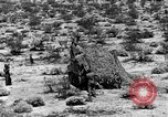 Image of camouflage United States USA, 1942, second 30 stock footage video 65675050742