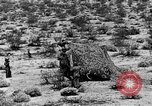 Image of camouflage United States USA, 1942, second 32 stock footage video 65675050742