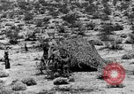 Image of camouflage United States USA, 1942, second 33 stock footage video 65675050742