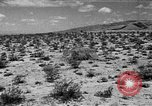 Image of camouflage United States USA, 1942, second 45 stock footage video 65675050742
