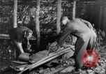 Image of coal mining United States USA, 1919, second 41 stock footage video 65675050760