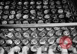 Image of beer brewery opening after prohibition United States USA, 1934, second 32 stock footage video 65675050774