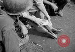 Image of Santo Tomas concentration camp Manila Philippines, 1945, second 19 stock footage video 65675050790