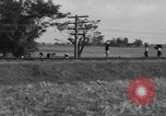Image of Santo Tomas concentration camp Manila Philippines, 1945, second 21 stock footage video 65675050797