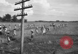 Image of Santo Tomas concentration camp Manila Philippines, 1945, second 62 stock footage video 65675050797