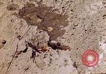 Image of dead bodies Tinian Island Mariana Islands, 1944, second 11 stock footage video 65675050848