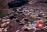 Image of dead bodies Tinian Island Mariana Islands, 1944, second 25 stock footage video 65675050848