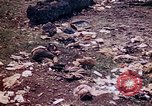 Image of dead bodies Tinian Island Mariana Islands, 1944, second 27 stock footage video 65675050848