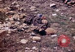 Image of dead bodies Tinian Island Mariana Islands, 1944, second 29 stock footage video 65675050848