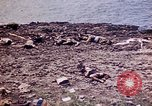 Image of dead bodies Tinian Island Mariana Islands, 1944, second 32 stock footage video 65675050848