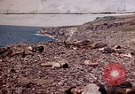Image of dead bodies Tinian Island Mariana Islands, 1944, second 38 stock footage video 65675050848
