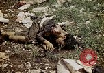 Image of dead bodies Tinian Island Mariana Islands, 1944, second 51 stock footage video 65675050848
