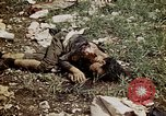 Image of dead bodies Tinian Island Mariana Islands, 1944, second 52 stock footage video 65675050848