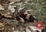 Image of dead bodies Tinian Island Mariana Islands, 1944, second 54 stock footage video 65675050848