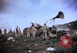 Image of 4th Marine Division Tinian Island Mariana Islands, 1944, second 34 stock footage video 65675050862
