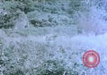 Image of 4th Marine Division Tinian Island Mariana Islands, 1944, second 3 stock footage video 65675050863