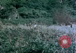 Image of 4th Marine Division Tinian Island Mariana Islands, 1944, second 8 stock footage video 65675050863