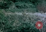 Image of 4th Marine Division Tinian Island Mariana Islands, 1944, second 10 stock footage video 65675050863