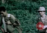 Image of 4th Marine Division Tinian Island Mariana Islands, 1944, second 39 stock footage video 65675050863