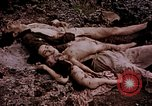 Image of atrocity victims Tinian Island Mariana Islands, 1944, second 24 stock footage video 65675050865