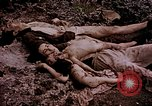 Image of atrocity victims Tinian Island Mariana Islands, 1944, second 25 stock footage video 65675050865